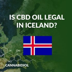 Is CBD Oil Legal in Iceland