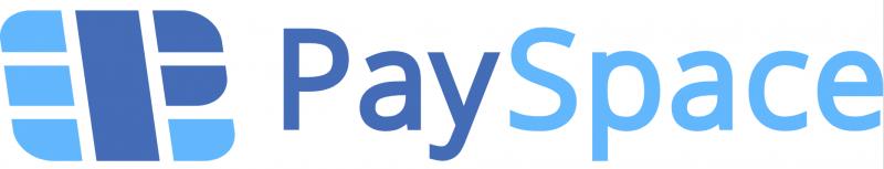 payspacelv logo